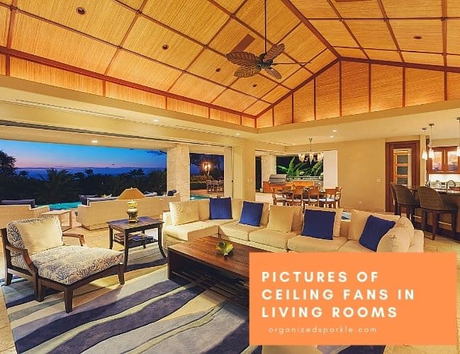 images of living room ceiling fans