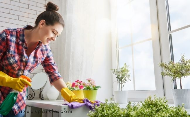 Dust Before You Clean Surfaces