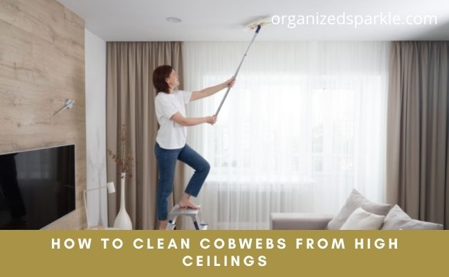 cleaning cobwebs from ceilings